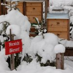 Winter am Bienenstand